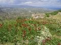 Acrocorinth-1-www.eternalgreece.com-by-E-Cauchi-0064