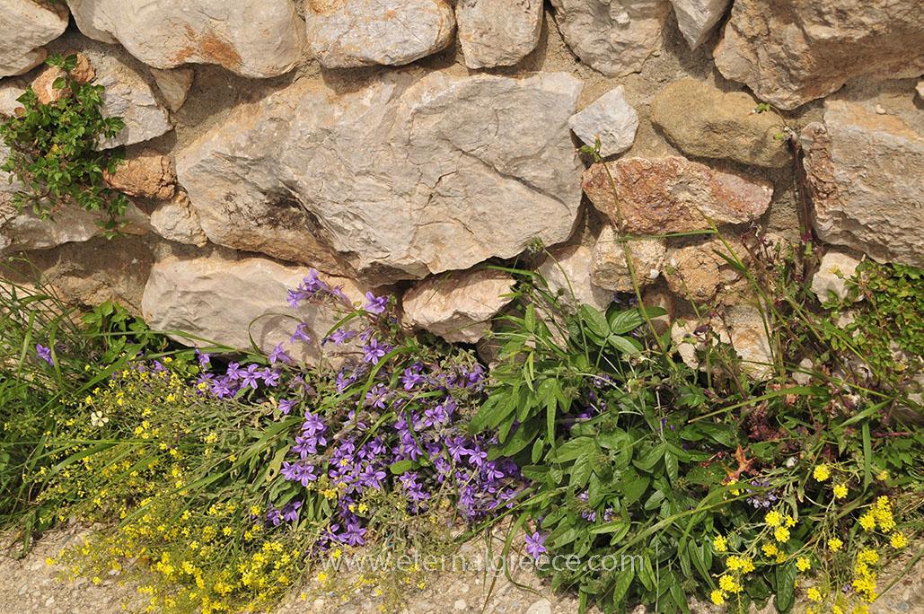 Mycenae-1-www.eternalgreece.com-by-E-Cauchi-0045