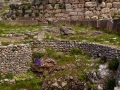 Mycenae-1-www.eternalgreece.com-by-E-Cauchi-0084