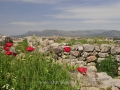 Ancient-Tiryns-1-www.eternalgreece.com-by-E-Cauchi-0011