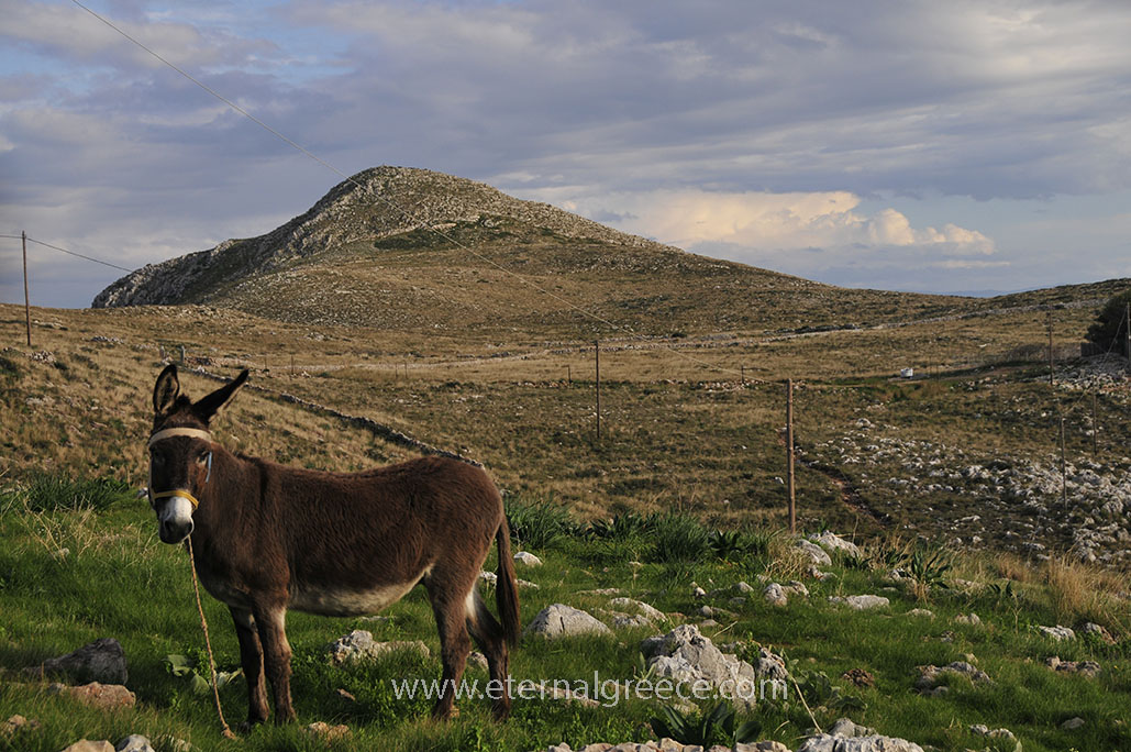 Mani-Peloponnese-www.eternalgreece.com-by-E-Cauchi-458