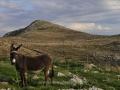 !Mani-Peloponnese-www.eternalgreece.com-by-E-Cauchi-224